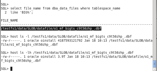sqlplus-bigfile-info-and-host-to-ls