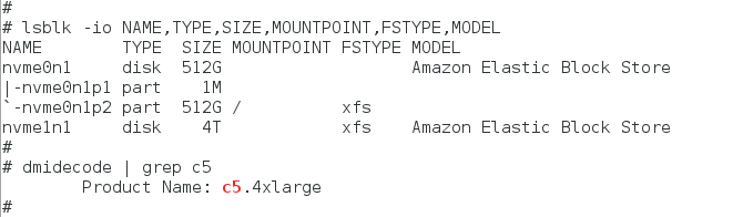A Word About Amazon EBS Volumes Presented As NVMe Devices On